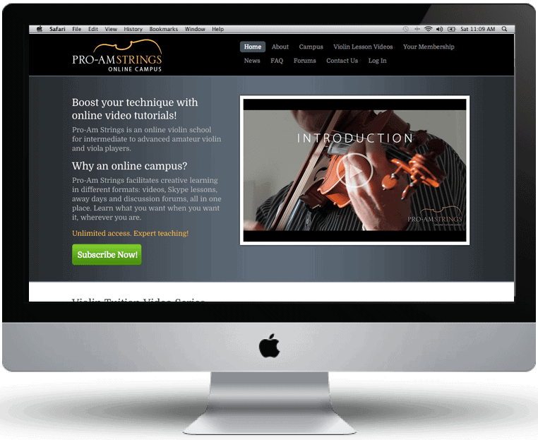 Pro-Am Strings website design by Cameron Creative, Norwich